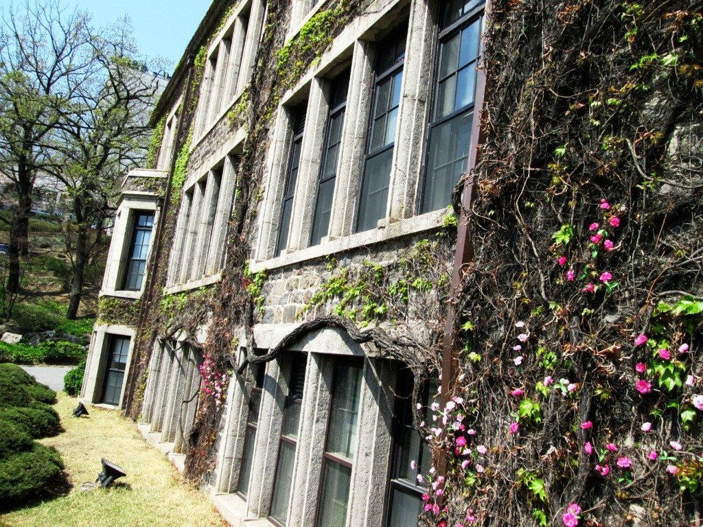 Yonsei Administration Building –  artistically colored by the walls of sweet pink confetti.
