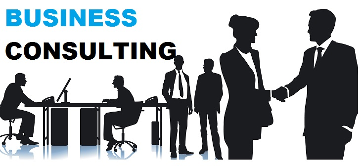 Image result for Business Consultant